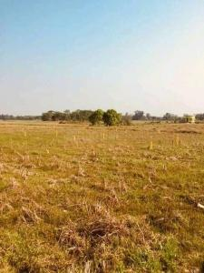 Gallery Cover Image of  Sq.ft Residential Plot for buy in Baruipur P for 484000