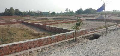 1010 Sq.ft Residential Plot for Sale in Narhe, Pune