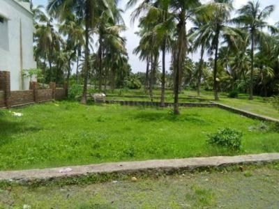 Gallery Cover Image of  Sq.ft Residential Plot for buy in Virar West for 3000000