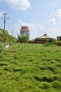 Gallery Cover Image of  Sq.ft Residential Plot for buy in Yadagirigutta for 605000