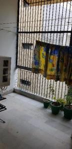 Balcony Image of PG 4039986 Paschim Vihar in Paschim Vihar