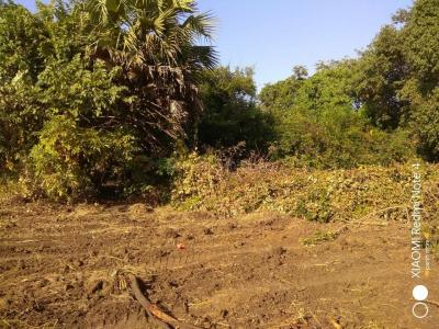 Gallery Cover Image of 1000 Sq.ft Residential Plot for buy in Boisar for 400000