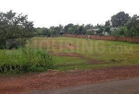 Gallery Cover Image of  Sq.ft Residential Plot for buy in Sector 19 Dwarka for 40000000