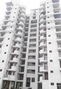 Gallery Cover Image of 1233 Sq.ft 2 BHK Apartment for buy in Parsvnath Sterling, Loni Industrial Area for 4500000