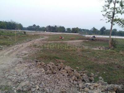 Gallery Cover Image of  Sq.ft Residential Plot for buy in Thakurpukur for 169000
