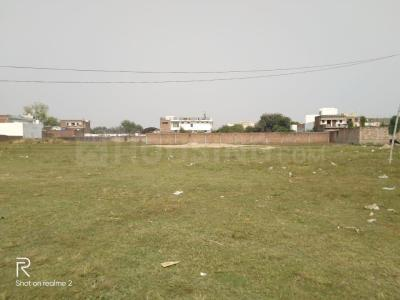 1512 Sq.ft Residential Plot for Sale in Tri Nagar, New Delhi
