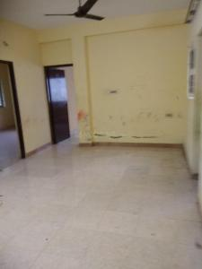 Gallery Cover Image of 860 Sq.ft 2 BHK Apartment for rent in Thoraipakkam for 12500