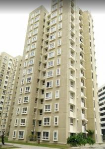 Gallery Cover Image of 1748 Sq.ft 3 BHK Apartment for rent in Brookefield for 33000