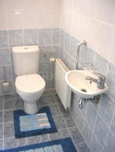 Bathroom Image of Adiga Homes PG in BTM Layout