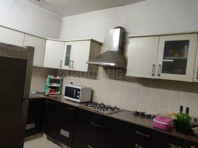 Gallery Cover Image of 1600 Sq.ft 3 BHK Apartment for rent in Hanumant Bollywood Heights I, Sector 20 for 18500