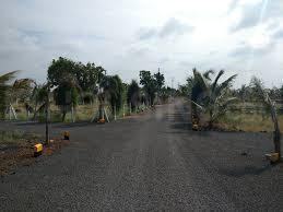 Gallery Cover Image of  Sq.ft Residential Plot for buy in Sus for 751000