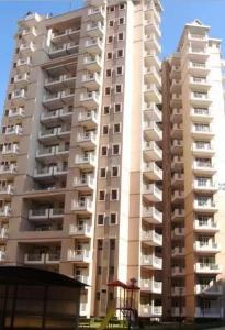Gallery Cover Image of 1576 Sq.ft 3 BHK Apartment for rent in Sector 88 for 7000