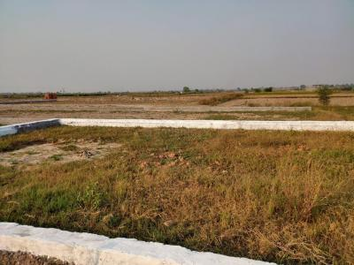 450 Sq.ft Residential Plot for Sale in Hamidpur, Palwal