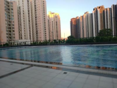 Gallery Cover Image of 1350 Sq.ft 3 BHK Apartment for buy in Sector 151 for 3950000