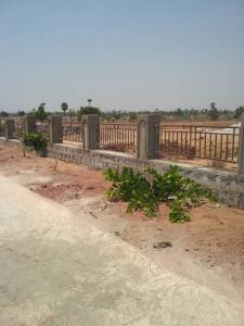 Gallery Cover Image of  Sq.ft Residential Plot for buy in Mangalpalle for 3325000