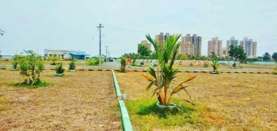 Gallery Cover Image of  Sq.ft Residential Plot for buy in Padapai for 3117600