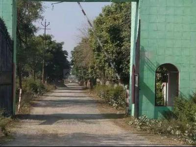Gallery Cover Image of  Sq.ft Residential Plot for buy in Nainana Jat for 700000