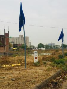 350 Sq.ft Residential Plot for Sale in Sector 83, Faridabad
