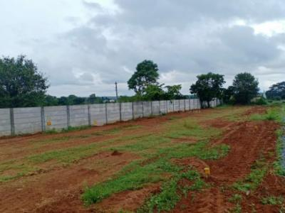 Gallery Cover Image of  Sq.ft Residential Plot for buy in Hosur for 1352325