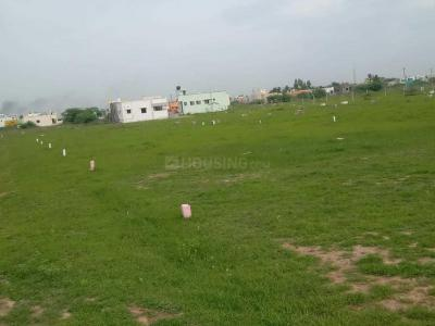Gallery Cover Image of  Sq.ft Residential Plot for buy in Veppampattu for 700000