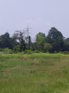 Gallery Cover Image of 70000 Sq.ft Residential Plot for buy in Raipur Court Apartments, Garia for 200000000