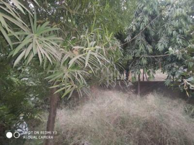 2000 Sq.ft Residential Plot for Sale in Sector 41, Noida