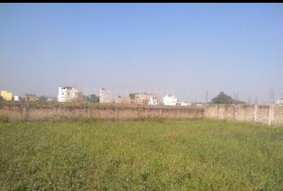 1000 Sq.ft Residential Plot for Sale in Ramkrishan Nagar, Patna