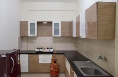 Kitchen Image of PG 4643519 Whitefield in Whitefield