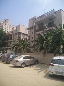 Building Image of Coho PG in Sushant Lok I