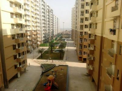 Gallery Cover Image of 950 Sq.ft 2 BHK Apartment for rent in OXY Homez, Bhopura for 7500
