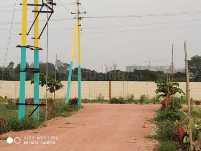 1620 Sq.ft Residential Plot for Sale in Margondanahalli, Bangalore