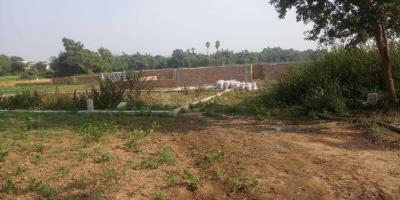 1000 Sq.ft Residential Plot for Sale in Bihta, Patna
