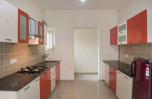 Kitchen Image of Ef-04 Banyan Tree in Bellandur