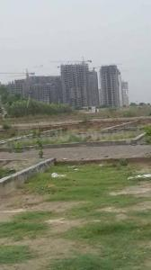 Gallery Cover Image of  Sq.ft Residential Plot for buy in Sector 40 for 550000