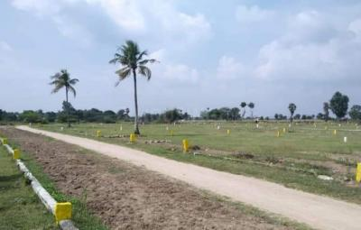 1000 Sq.ft Residential Plot for Sale in Ranipet Sipcot, Vellore