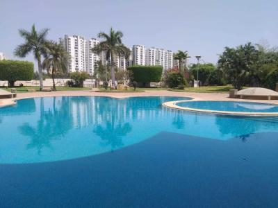 Gallery Cover Image of 2600 Sq.ft 3 BHK Apartment for rent in Kothaguda for 85000