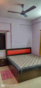 Gallery Cover Image of 1200 Sq.ft 2 BHK Apartment for rent in Murali for 11000