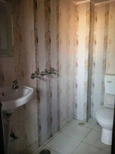 Common Bathroom Image of Vidya Mansion PG in Ballabhgarh