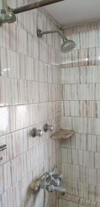 Bathroom Image of PG 4271878 Ballygunge in Ballygunge