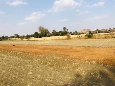 1000 Sq.ft Residential Plot for Sale in Jankipuram Extension, Lucknow