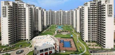 Gallery Cover Image of 975 Sq.ft 2 BHK Apartment for buy in Bestech Park View Delight, Sector 6 Dharuhera for 2900000