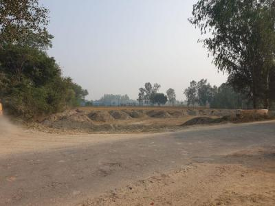 Gallery Cover Image of  Sq.ft Residential Plot for buy in Anora Kala for 1399000