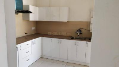 Kitchen Image of Dhall Property in Sector 20