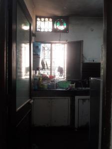 Kitchen Image of PG 4036337 Sarita Vihar in Sarita Vihar