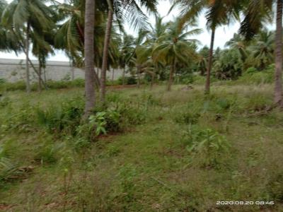 18530 Sq.ft Residential Plot for Sale in Ramachandra Puram, Hyderabad