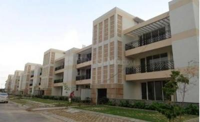 Gallery Cover Image of 1600 Sq.ft 3 BHK Independent Floor for rent in Sector 81 for 15500