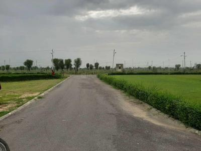 Gallery Cover Image of  Sq.ft Residential Plot for buy in Jagatpura for 7500000
