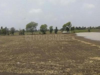 Gallery Cover Image of 1000 Sq.ft Residential Plot for buy in Ayodhya Nagar for 2600000