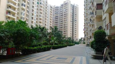 Gallery Cover Image of 1436 Sq.ft 3 BHK Apartment for buy in Gulshan Vivante, Sector 137 for 8800000