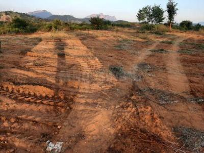 4320 Sq.ft Residential Plot for Sale in Padmavathi Nagar, Tirupathi